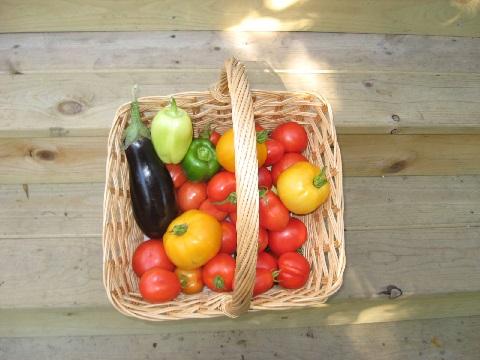 natural_foods.jpg